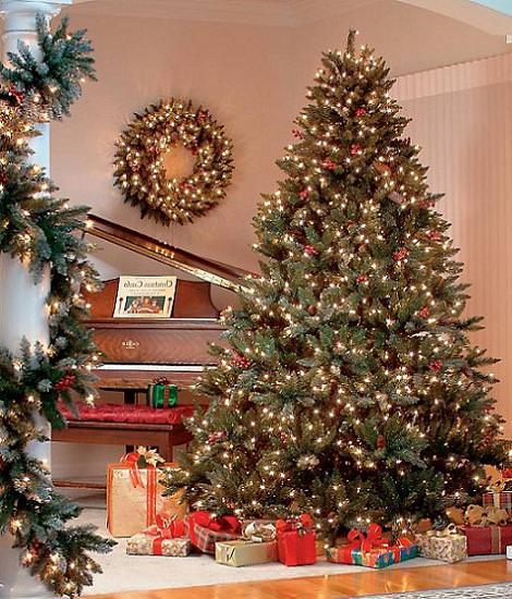 Decoraci n con luces de navidad - Luces exterior navidad ...