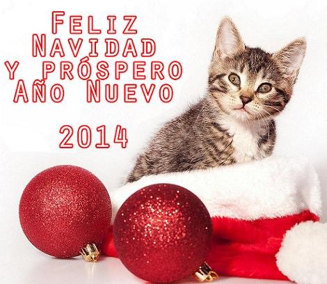 20 Dedicatorias originales para felicitar el Año Nuevo 2014